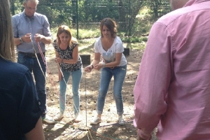 teambuilding activiteit