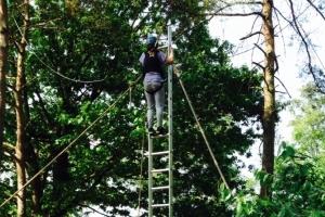 trapeze ladder